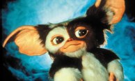 A Mogwai from Gremlins